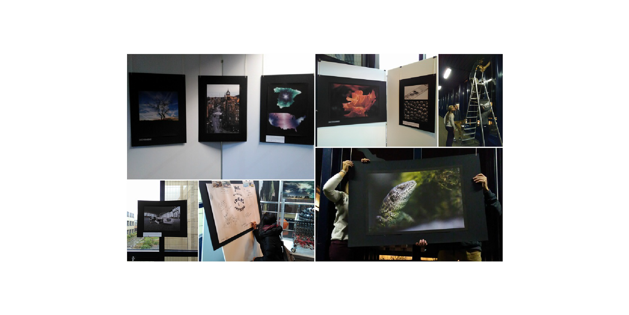 BIOINSPIRED TECHNOLOGY PHOTO EXHIBITION